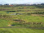 Nafnlausa Golffélagið - Hausmynd